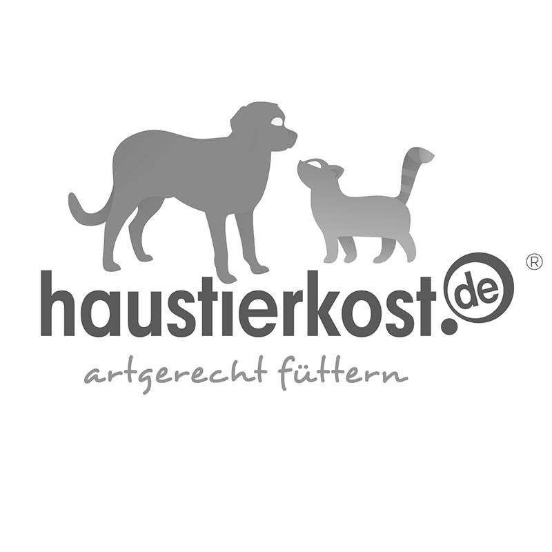 Pferdefleischwürfel fettig